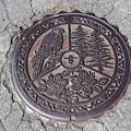 長野県小県郡旧長和町マンホール