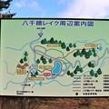 八千穂レイク周辺案内図