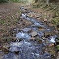 散策脇の渓流