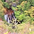 展望台からの横谷大滝