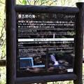 IMG_0137善五郎滝由来