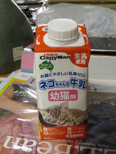 Photos: ニャんこミルク