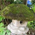 苔むした石灯籠