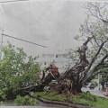 Photos: 台風6号