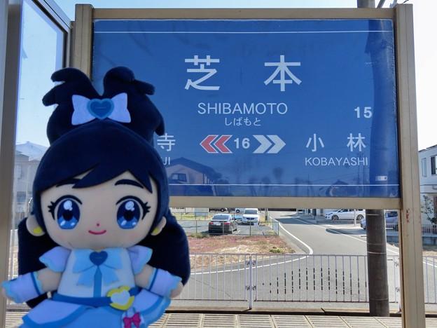 キュアホワイト×遠州芝本駅