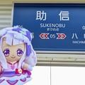 キュアアムール×助信駅