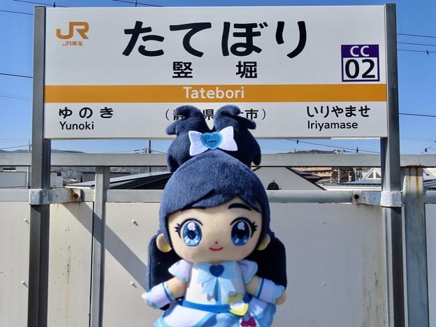 キュアホワイト×竪堀駅