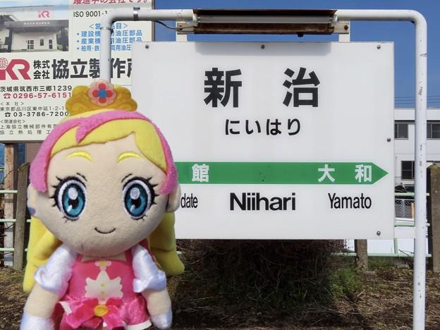 キュアフローラ×新治駅