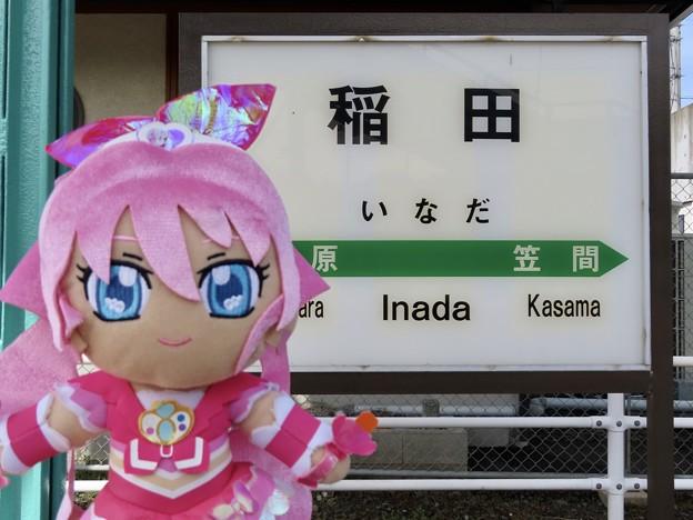 キュアメロディ×稲田駅