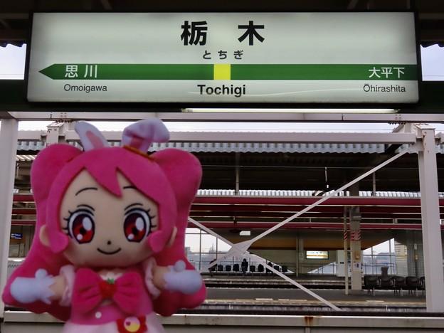 キュアホイップ×栃木駅