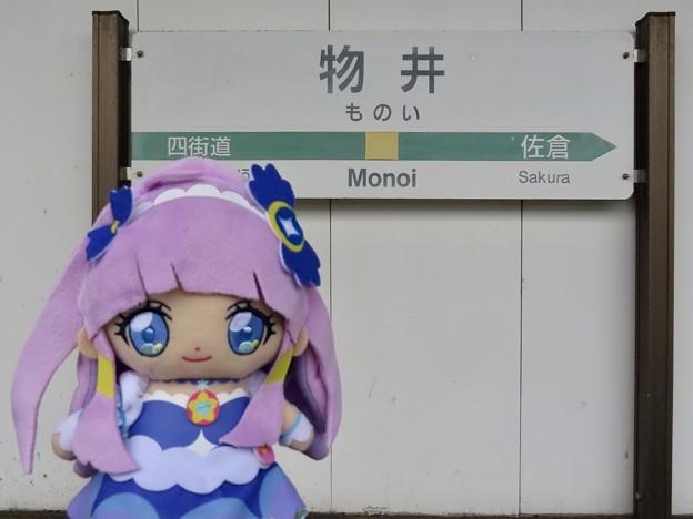 キュアセレーネ×物井駅
