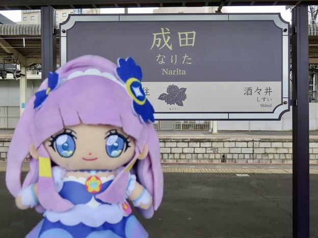 キュアセレーネ×成田駅