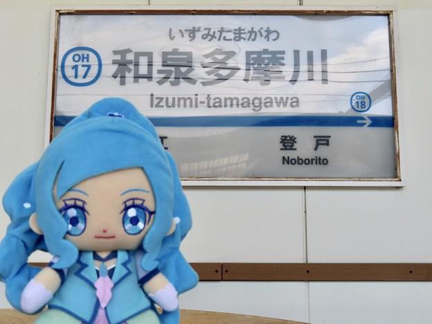 キュアフォンテーヌ×和泉多摩川駅
