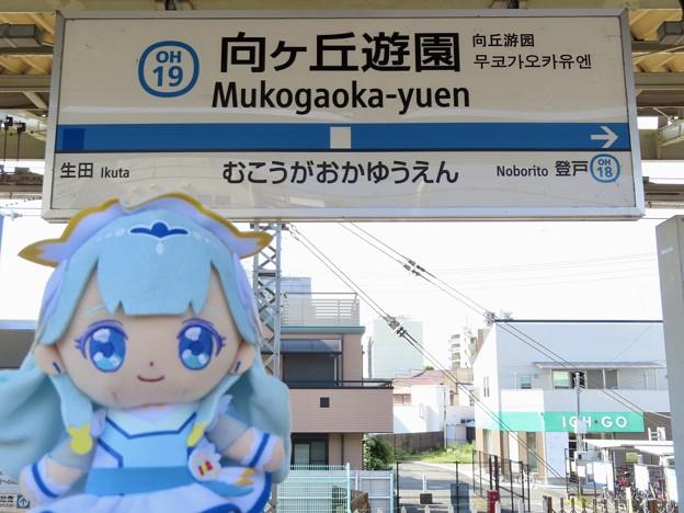キュアアンジュ×向ヶ丘遊園駅