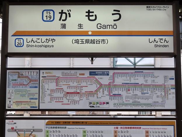 蒲生駅 Gamo Sta.