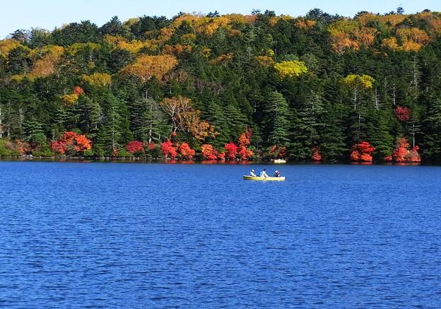 ブルーの池で紅葉見る。