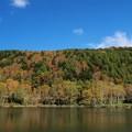 秋を迎えた木戸池。