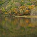 戸隠鏡池の秋色。