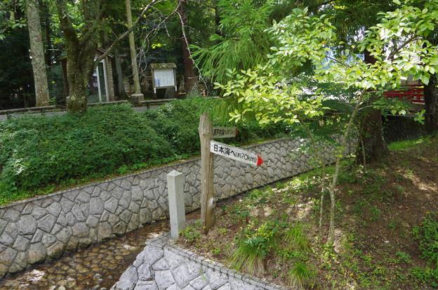 水分れ(日本一低い中央分水界)