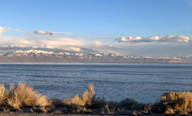 Antelope Islandから見る裏山