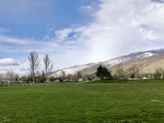 雪の裏山とグリーンの裏山