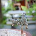 Photos: Bird Bath