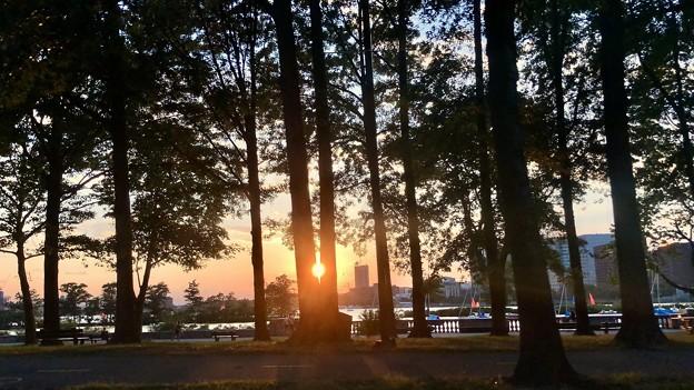 夕陽 Hello~Boston♪