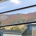 Photos: 窓から見える裏山の秋♪
