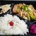 Photos: 郡山市のお弁当屋さん おとんおかんさんにて豚ネギ塩焼弁当をいただく 美味しゅうございました