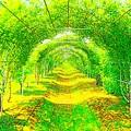 Photos: グリーントンネル