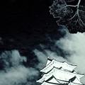 Photos: 星空の城