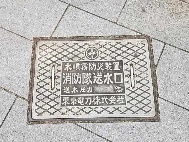 東京電力のフタ(水噴霧器防火装置 消防隊送水口)