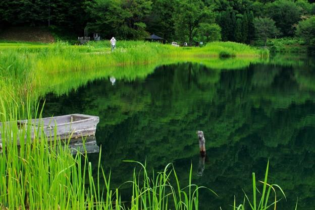 Photos: 仁科三湖