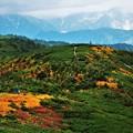 Photos: 至福の稜線
