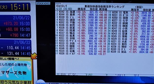 業種別株価指数勝落ランキング
