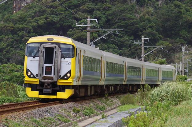 E257系500番代マリNB-16編成の臨時特急新宿さざなみ3号 館山行き