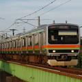 IMGP8805