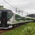 E257系5000番代オオOM-91編成で運転された臨時特急さざなみ91号