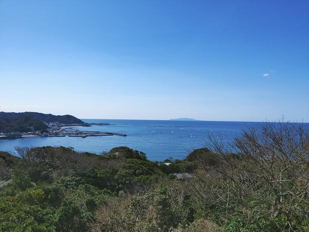 披露山から伊豆大島