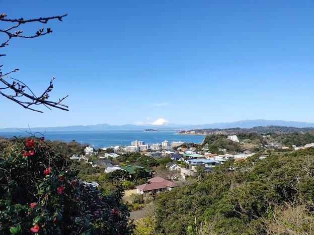 披露山から富士山