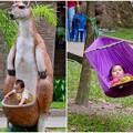 動物よりも人を見ていたい-Ho Chi Minh, Viet Nam