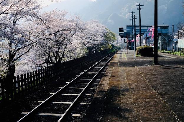 旧家の趣き-京都府笠置町:JR笠置駅