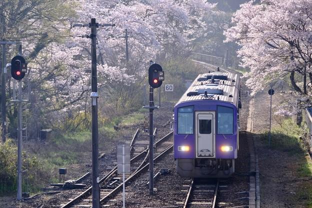 さくら列車-京都府笠置町:JR笠置駅