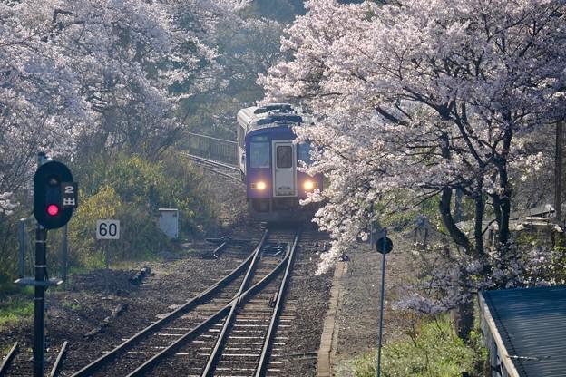 黄砂-京都府笠置町:JR笠置駅