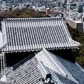 Photos: 大名気分-愛媛県松山市:松山城