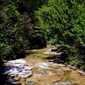 森林浴-長野県上松町:赤沢自然休養林