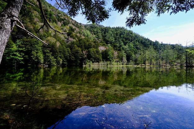 宝石のような池-長野県松本市:上高地・明神池