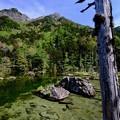 皇室にも愛された場所-長野県松本市:上高地・明神池