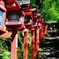 緑に彩られた神社-京都市左京区:貴船神社
