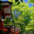 Photos: お国柄-京都市左京区:鞍馬寺